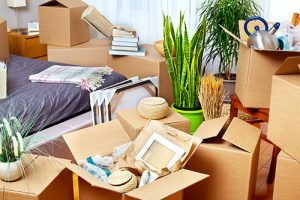 moving disorganization
